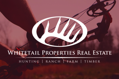 whitetail agents website Design